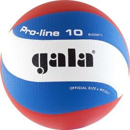 Мяч волейбольный GALA PRO LINE 10BV