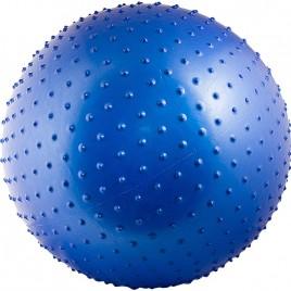 Мяч гимнастический Torres AL100165